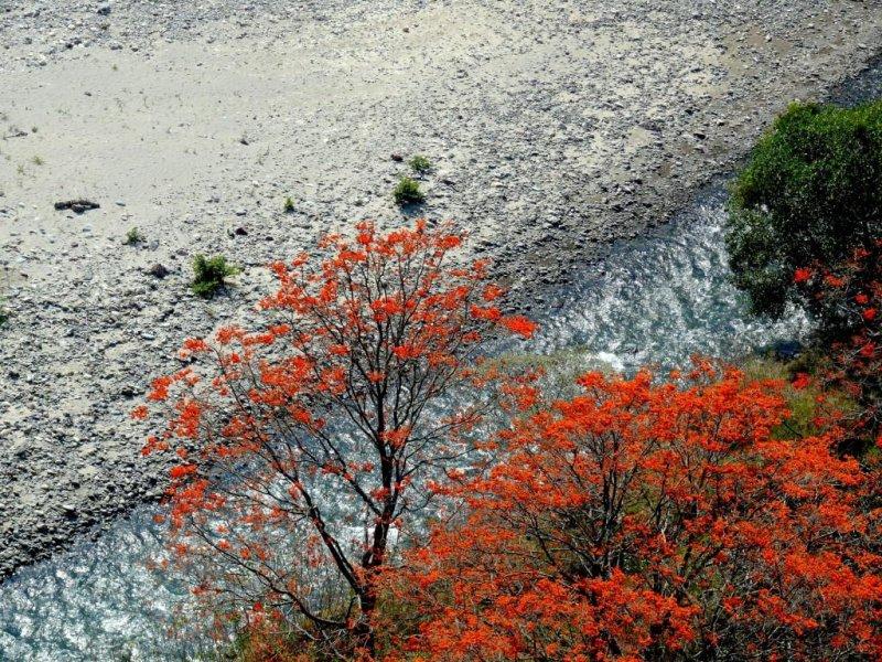 Río Mucuchachi