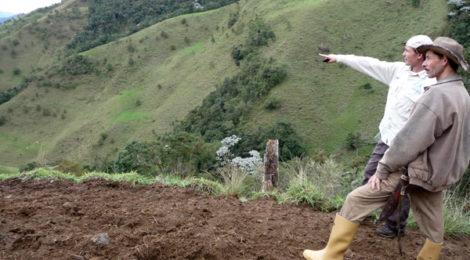 Campesinos surmerideños necesitan generar sus propias semillas