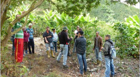 De espalda el agrotecnico Ruben D'Jesus frente al grupo de miembros de Mucusur y campesinos locales de La Coromoto