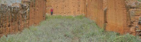 baquiano Orangel Rojas en la nave principal de los restos de una iglesia en Ruinas de Mucuño